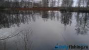 Пруд у поселка Кирпичного завода (рядом с аэропортом Внуково). Ловля карася. Отчет о рыбалке