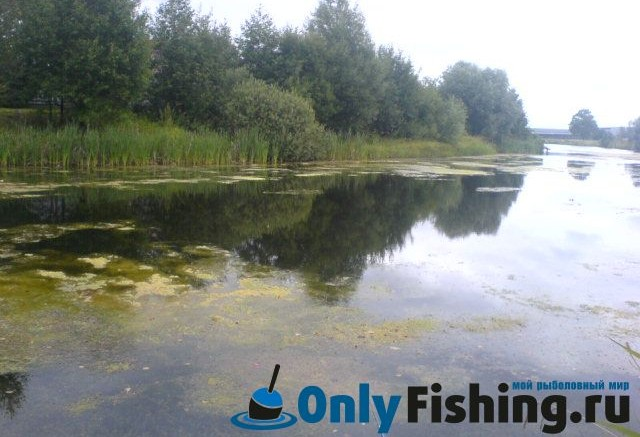 загородные клубы подмосковья с рыбалкой