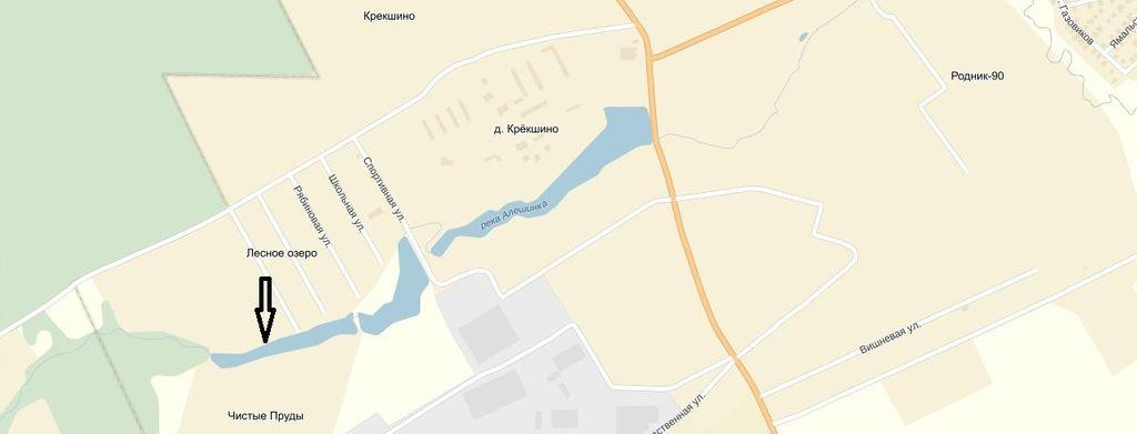 Крекшино.Река Алешинка. 3 пруд