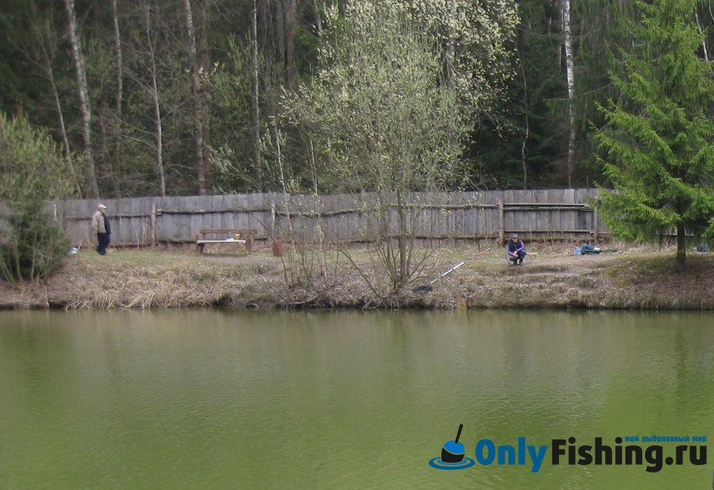 Рыбалка в 2011.Отчет