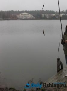 Рыбалка. Природный курорт Яхонты