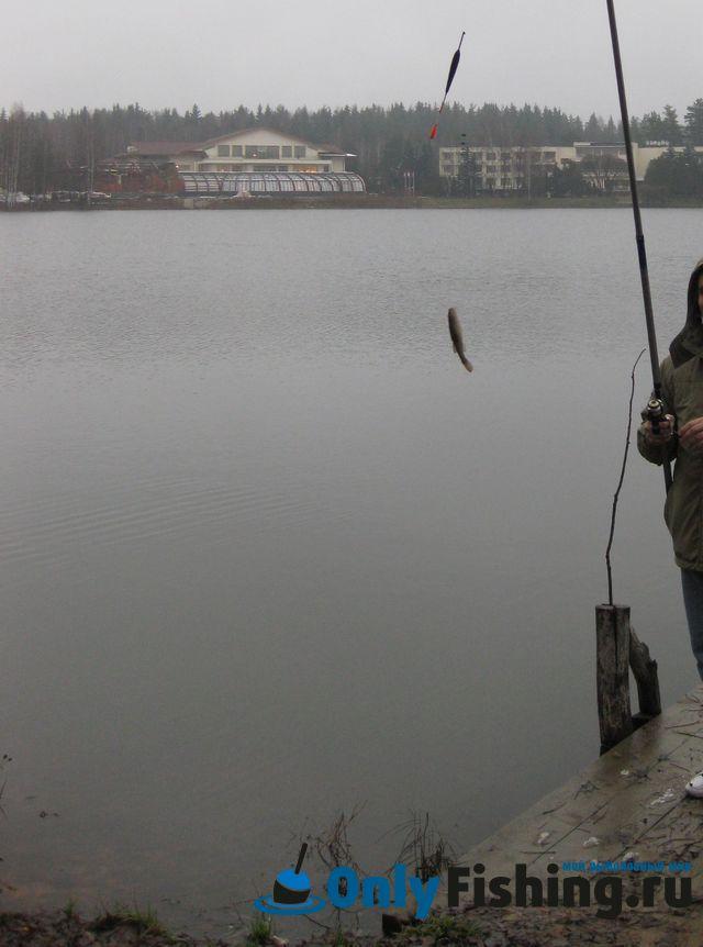 рыбалка на водоемах ногинска