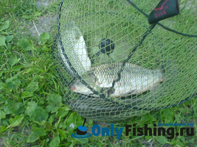 Шамиран.Отчет о рыбалке