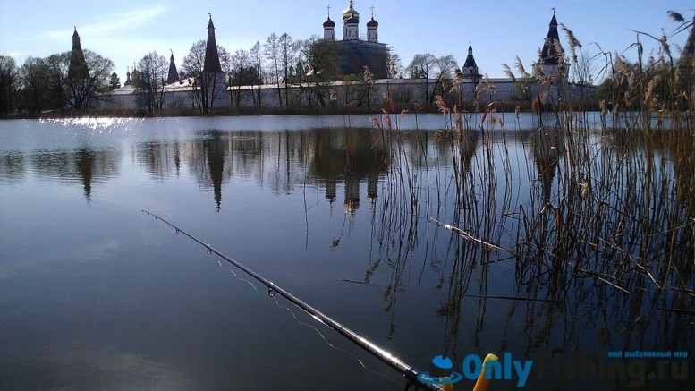 Ловля карася. Отчет о рыбалке