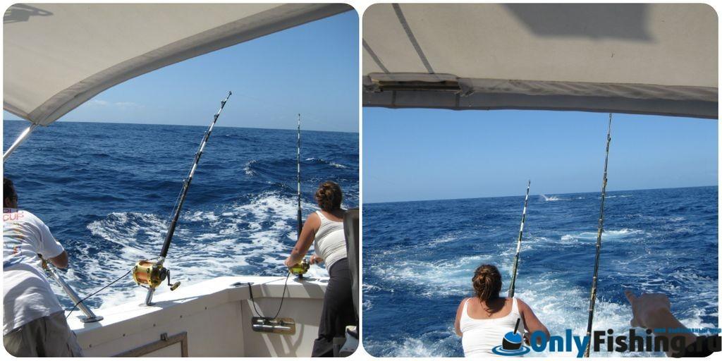 Поклевка рыбы на рыбалке