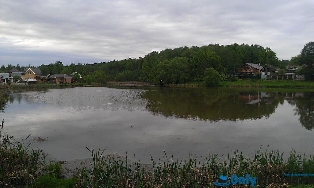 рыбалка в бурцево московская область 2016