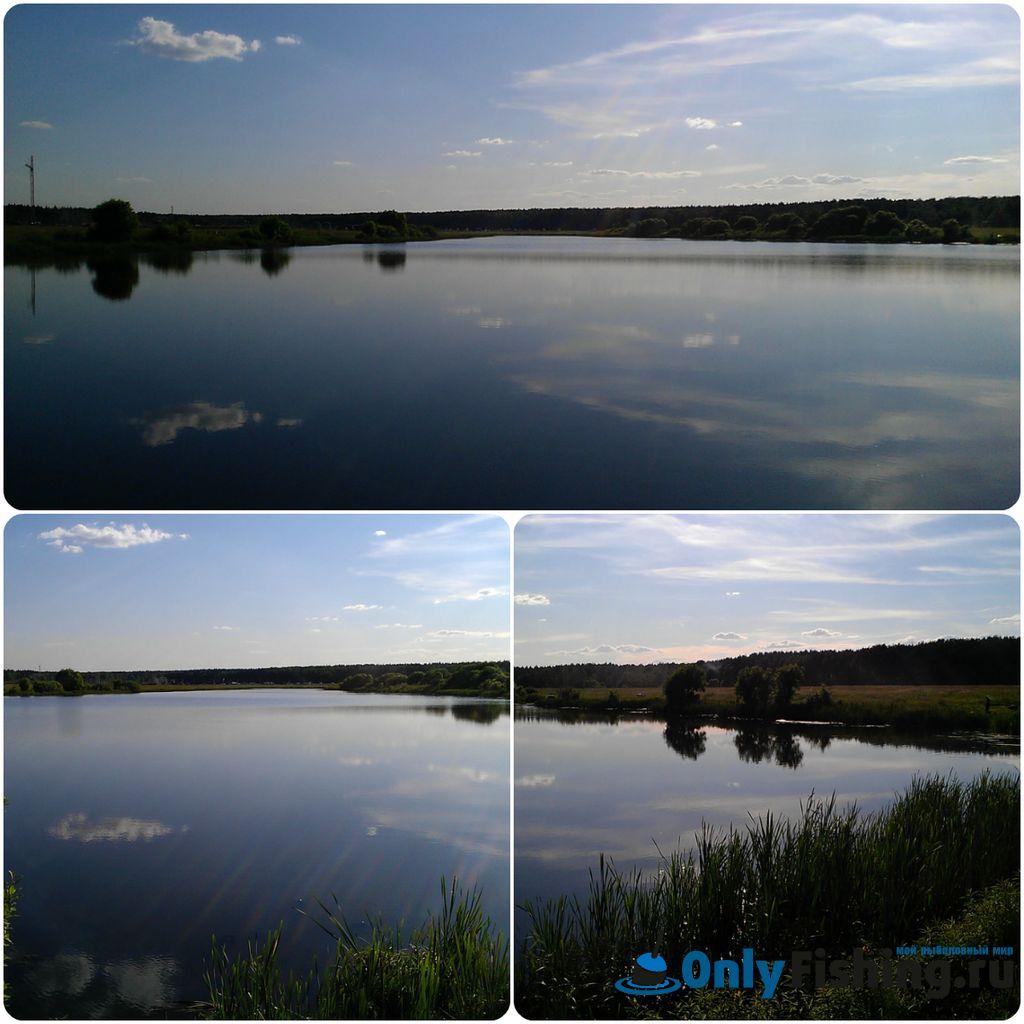 Алешинка.Ново-Переделкино. Рыбалка