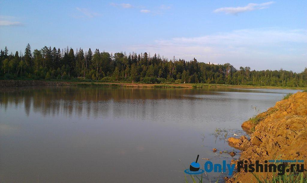 Гостевой пруд в Раково