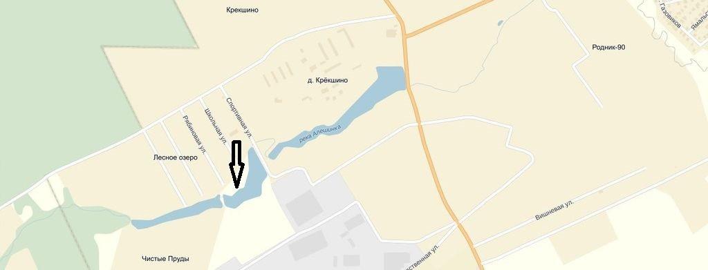 Крекшино. Река Алешинка. 2  водоем
