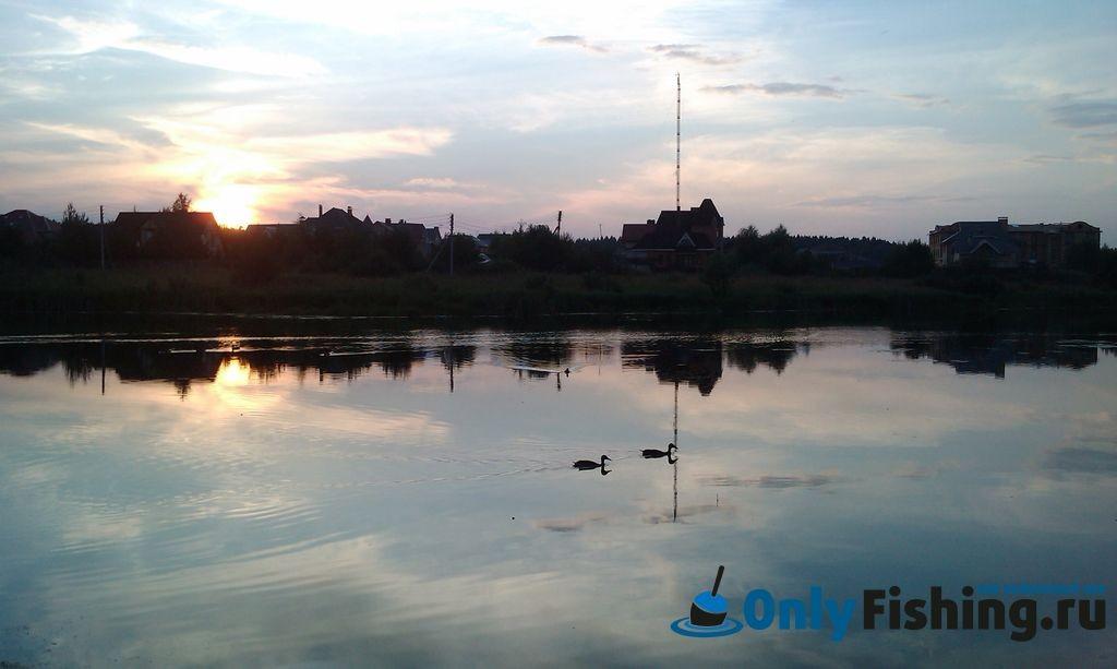Отчет о рыбалке