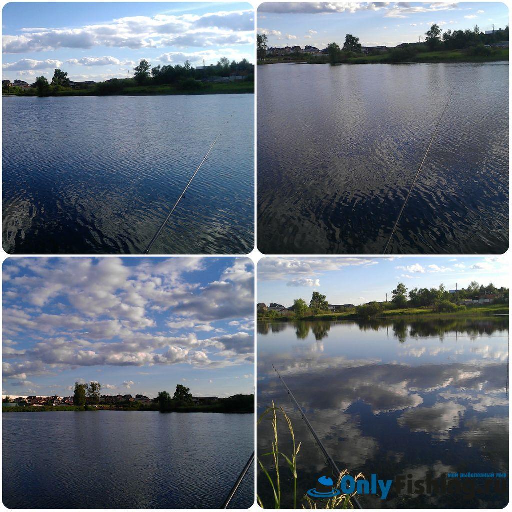 Река Алешинка. Просто фотографии водоема с рыбалки