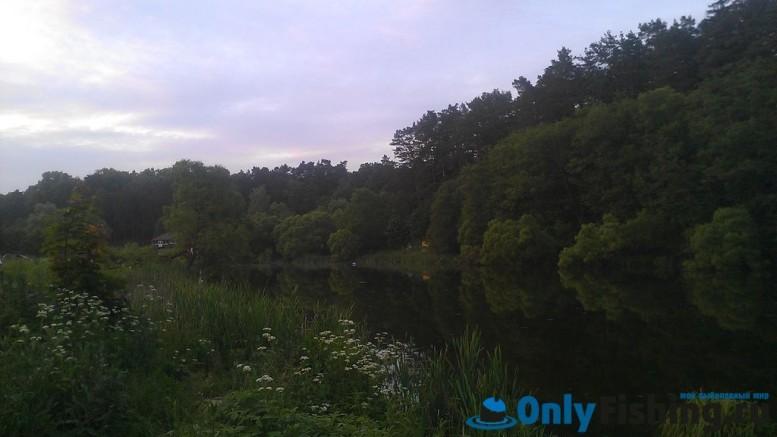 Река Ликова. Валуево. Рыбалка