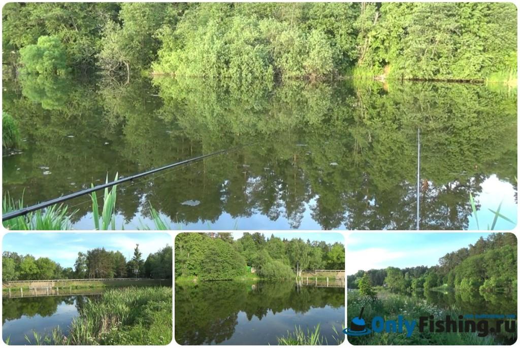 Рыбалка в Валуево