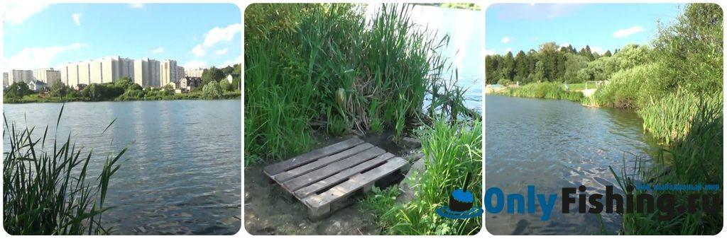 Ликовский-Пыхтинский пруд. Отчет о рыбалке
