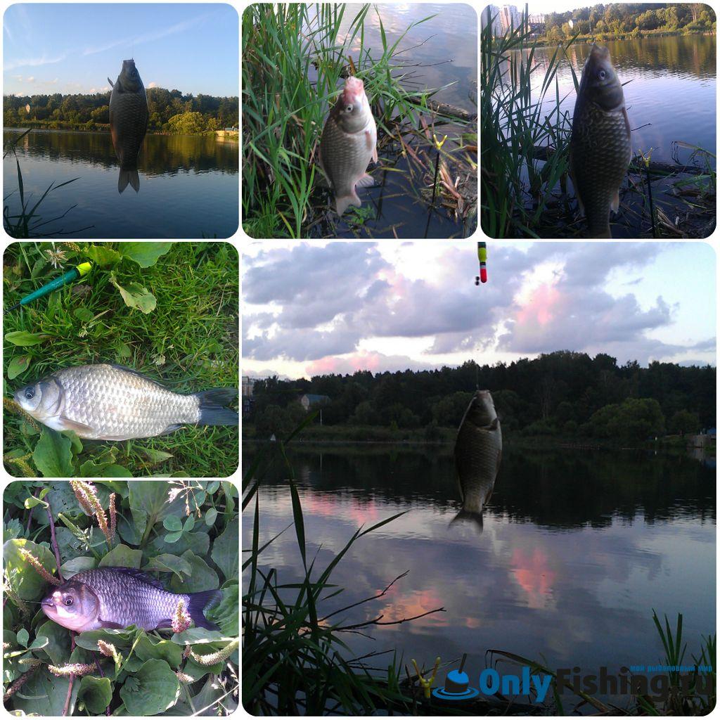 Река Ликова. Рыбалка. Ловля карася. Отчет о рыбалке