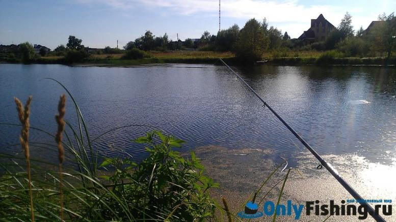Рыбалка в Крекшино. Ловля окуня. Отчет о рыбалке