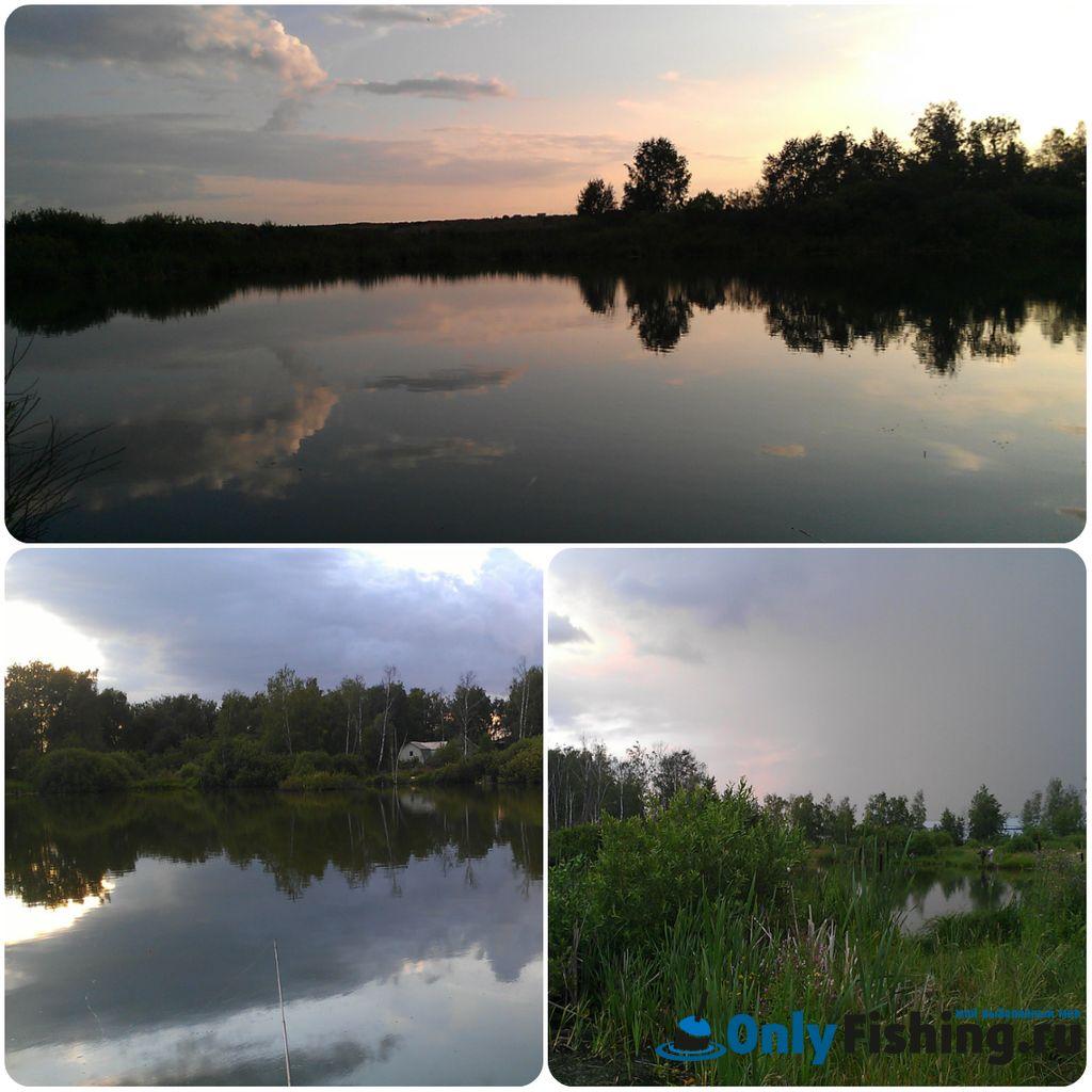 Рыбалка во Внуково. Отчет о рыбалке