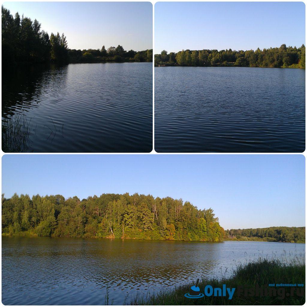 Отчет о рыбалке на реке Шибахта