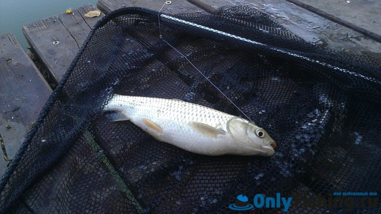 Рыбалка в клубе Александр
