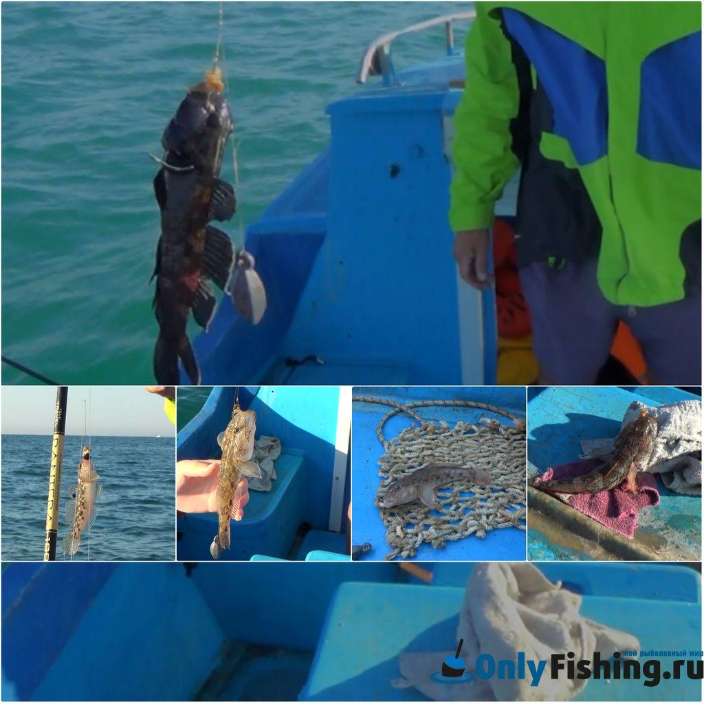 Морская рыбалка в Болгарии